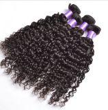 Het diepe Krullende Maagdelijke Onverwerkte Braziliaanse Haar van het Menselijke Haar