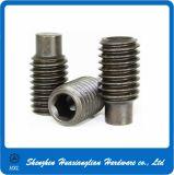 Parafuso de fixação liso do soquete do aço inoxidável (DIN913/914/915/916)