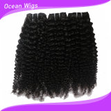 Cabelo Curly brasileiro do Virgin