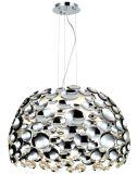 Lamp van de Tegenhanger van het Ijzer van het nieuwe Product de Moderne (H0027/S/C)