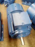 Ie1 Ie2 (CER) dreiphasigelektromotor Y2 (Y2-200L-4)