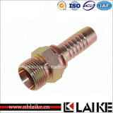 Metrisches Male Hydraulics Hose Ende Fitting von Highquality 10411