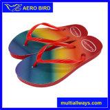 Heiße neue Entwurfs-Produkt-Fußbekleidung-Hefterzufuhr für Mädchen