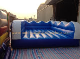 Sale를 위한 매력적인 Surfboard Inflatable Sports Games