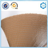 Material de construcción de papel de la base de panal, base de la puerta, pared de partición, el panel del recinto limpio