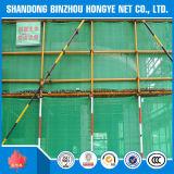 A rede de segurança do verde da construção do HDPE para a segurança exterior do edifício e arruma
