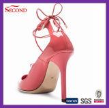 Schoenen van de Dames van de Opslag van de specialiteit de Hoge Gehielde