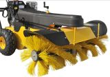 Горячее Sell 6.5HP Gasoline Power Sweeper (SSG65100A)