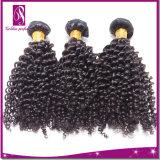 Vente en gros crue de cheveux de Vierge de la prolongation 100 bouclés crépus