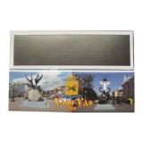 Magnete quadrato lungo del frigorifero di formato 100X45mm con qualità di primo tasso