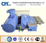 Cyyp 59 Uninterrupted Service Large FlowおよびHigh Pressure LNG Liquid Oxygen Nitrogen Argon Multiseriate Piston Pump