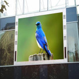 Tela de exposição pequena ao ar livre de venda quente da campanha publicitária nos meios de comunicação do diodo emissor de luz do vídeo da cor P10 cheia