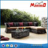Im Freienstreifen-Sofa-gesetzte Rattan-Patio-Möbel