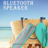 2016 de Openlucht Waterdichte Spreker Bluetooth van de Goede Kwaliteit (ID6019)