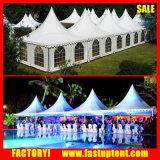 Tente de pagoda, Telt à vendre