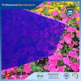 100% matière première feuille de plexiglas acrylique colorée de PMMA (PA-C)