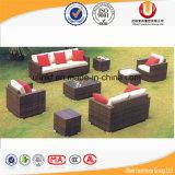 Sofás ao ar livre do jardim da mobília (UL-6010)