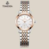 人および女性72018のための安い卸し売りステンレス鋼の水晶腕時計