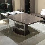 一流の現代ブラウンの大理石の優雅なダイニングテーブルセット(NK-DT228-1)