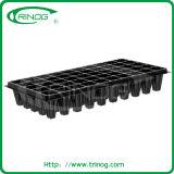 6 dienbladen van het cellenkinderdagverblijf in plastiek voor het groeien