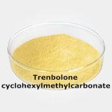 筋肉建物およびボディ成長のためのParabolanの回帰年のステロイドの粉のTrenb Hexahydrobenzyの炭酸塩