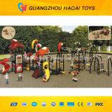 Campo de jogos ao ar livre do grande exercício do preço do competidor para os miúdos mais velhos (A-00801)