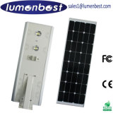 jardin Outdoor Lights Road Lamp de 20W Outdoor Solar DEL Street avec Solar Panel (CE RoHS)