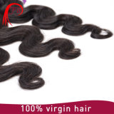 卸し売りもつれ自由で加工されていないブラジルボディ波の毛のよこ糸