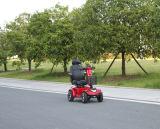 """""""trotinette"""" elétrico da mobilidade com o """"trotinette"""" Ws-R4 da mobilidade do certificado do TUV do CE"""