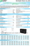 batteria di piccola dimensione del AGM 6V10ah (3-FM-10) con l'UL di RoHS del CE
