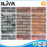 건축재료 벽 클래딩 (YLD-20010)를 위한 인공적인 벽돌 도와