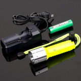 잠수 Flashlight T100 1X18650 Batt Single Mode Screw Switch