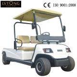 Mini bus elettrico del carico di 2 Seaters da vendere