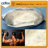 No anabolico Bodybuilding 315-37-7 del testoterone Enanthate/CAS di Testo-Enant Steroide