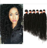 8A Grade Deep Curl Malaysian Virgin Human Hair