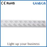 Pista di potenza della mensola dei due collegare LED