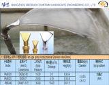 Вентилятор-Тип сопло фонтана брызга в нержавеющей стали или латуни