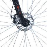 36V 250W Li-IonPower Stadt Electric Bicycle (LN28C13)