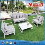 Rattan-Garten-Sofa-Möbel