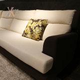 Moderno Tessuto di svago del sofà (998A)