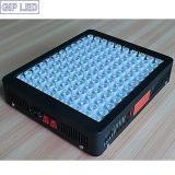 Industrie Leading 5W Series 600W LED Grow Light voor Plant