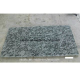 De goedkope Tegel van de Bevloering van het Graniet van de Steen van de Prijs met Goede Kwaliteit