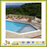 Travertine romain pour Swimming Pool Border Paver Tile
