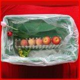 Sacchetto piano di plastica per frutta