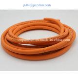Tubo flessibile di gomma del propano del tubo flessibile del gas del combustibile GPL della famiglia