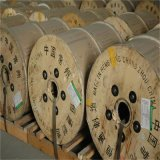 RF Cable를 위한 스테인리스 Steel CCA Copper Clad Aluminum Wire
