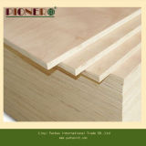 Plywood commerciale in Africa Market