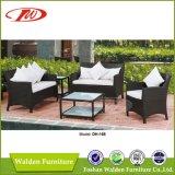 Салон, самомоднейший стул, Foshan (DH- 3005)