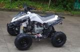 Vélo de quarte de la qualité 110cc à vendre (JY-100-1A)
