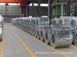 Le grand Gi d'IMMERSION chaude de paillette de SGCC a galvanisé la bobine en acier